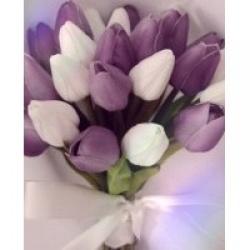 La tulipe's picture